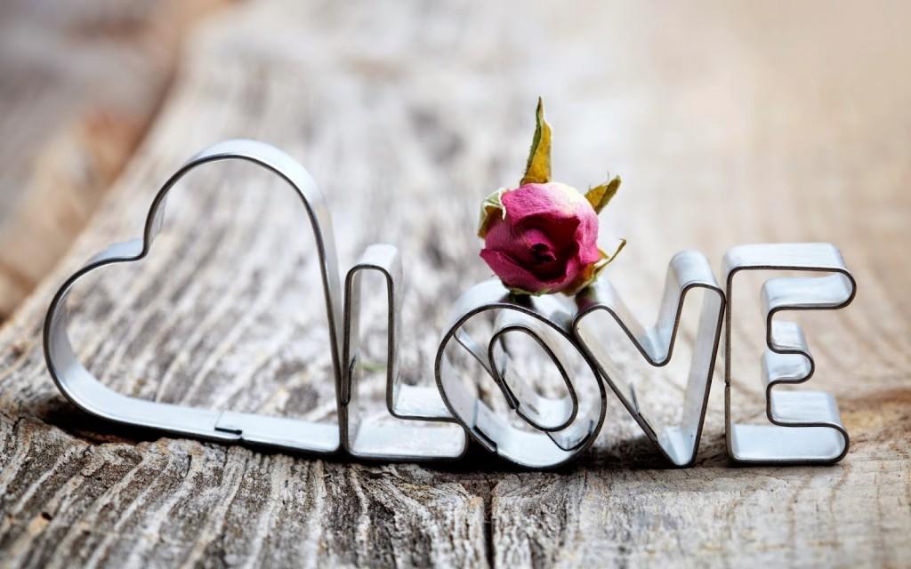 Valentine's Day 2015 2